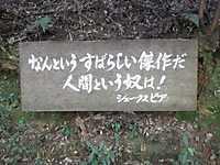 Dsc_0150_2
