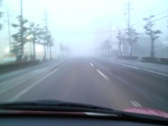 神秘的な朝