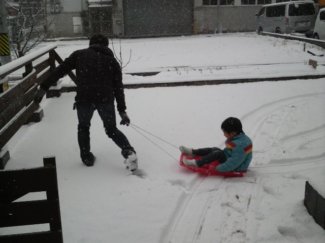 雪ですねぇ