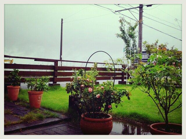 台風???